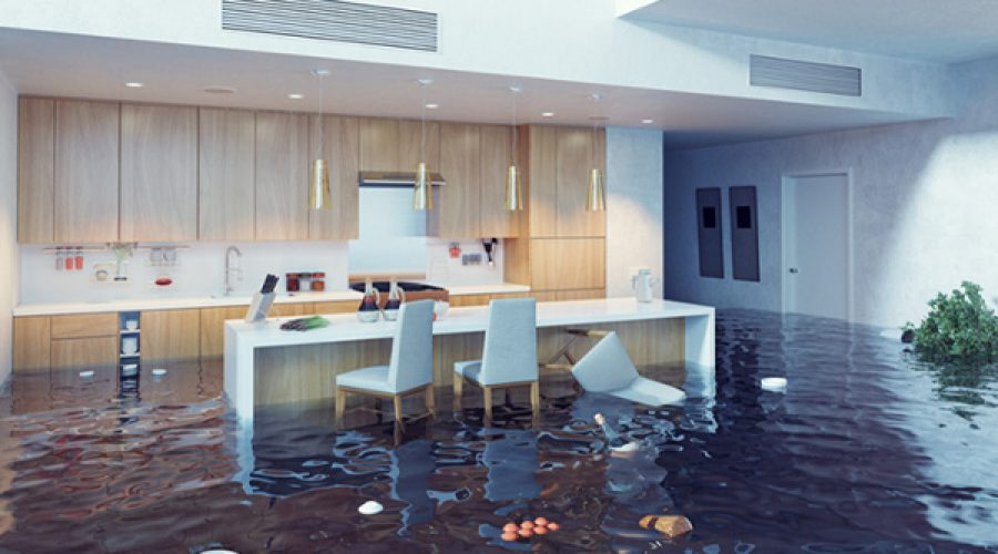 Some tips to be followed when having a service from water Damage Company